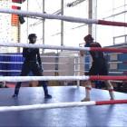 В Пензе проходят соревнования по смешанным боевым единоборствам