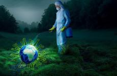 В Пензенской области коронавирус обнаружен в 14 районах и 2 городах