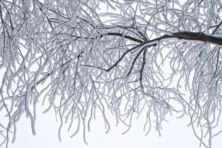 6 марта в Пензенской области похолодает до -15 градусов