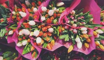 В Пензе открылось 12 цветочных ярмарок