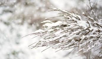 7 марта в Пензенской области похолодает до -18 градусов