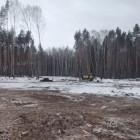 В Пензе идет подготовка территории под новое кладбище