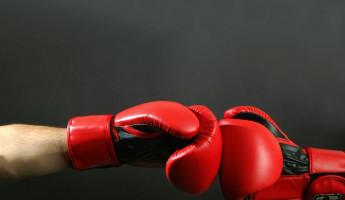 Пензенские боксеры стали призерами первенства ПФО