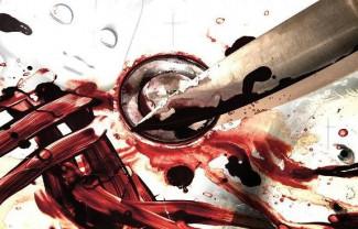 В Пензенской области мужчина зарезал сожительницу в новогоднюю ночь