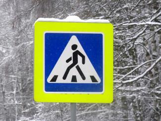 В Пензенской области будут отлавливать пешеходов нарушающих ПДД