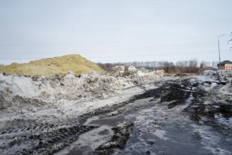 Началось строительство дороги в пензенском микрорайоне Дальнее Арбеково