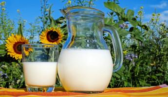В Пензенской области молока хватит на всех