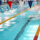 Пензенцев приглашают бесплатно поплавать в бассейне «Олимпийский»