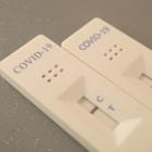 Почти 66 процентов населения Пензенской области прошли тест на коронавирус