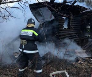 В селе под Пензой сгорел дотла деревянный дом