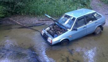 Четверо зареченцев заблудились в лесу под Пензой