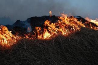 Под Пензой полыхает сухая трава: на месте работают 6 пожарных расчетов