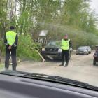В Пензе дерево упало прямо на машину