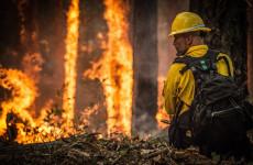 Жителей Кузнецка Пензенской области предупреждают о высокой пожароопасности