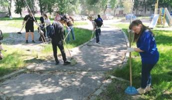 В одном из скверов Пензы провели экологическую акцию