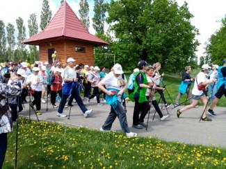 В Пензенской области состоялся фестиваль скандинавской ходьбы