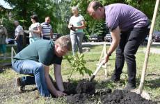 В Пензе прошел экологический субботник «Зеленая Весна»