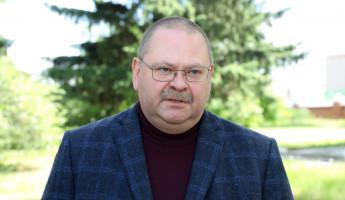 Мельниченко подвел итоги визита в Мокшанский район Пензенской области