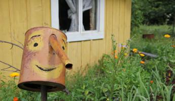 У жительницы Пензенской области разобрали дачный дом по частям