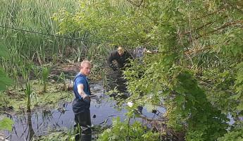 В Пензенской области вытащили из водоема еще один труп
