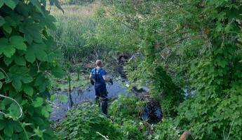 Установлена личность мужчины, тело которого достали из пруда под Пензой