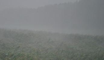 Пензенцев предупредили о граде, ливне и шквалистом ветре в ближайшие часы