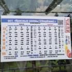 На остановках Пензы появилось расписание транспорта с QR-кодами