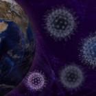 За сутки в Пензенской области выявили коронавирус в 4 районах и 2 городах