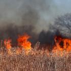 За сутки в Пензенской области случилось пять пожаров