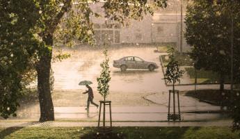 Какая погода ожидается в Пензенской области 1 августа?