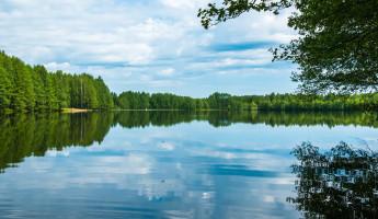 Какая погода ожидается в Пензенской области 2 августа?