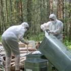 Опасная свалка ртутных ламп была обнаружена в пензенском лесу