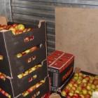 В Пензе изъяли 3 тонны санкционных фруктов и овощей