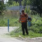 Коломыцева: «Никольские власти нарушают путинский принцип прозрачности выборов»