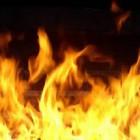 В Пензенской области страшный пожар тушили одиннадцать человек