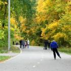Иван Белозерцев поручил создать в Пензе лесопарковые зоны
