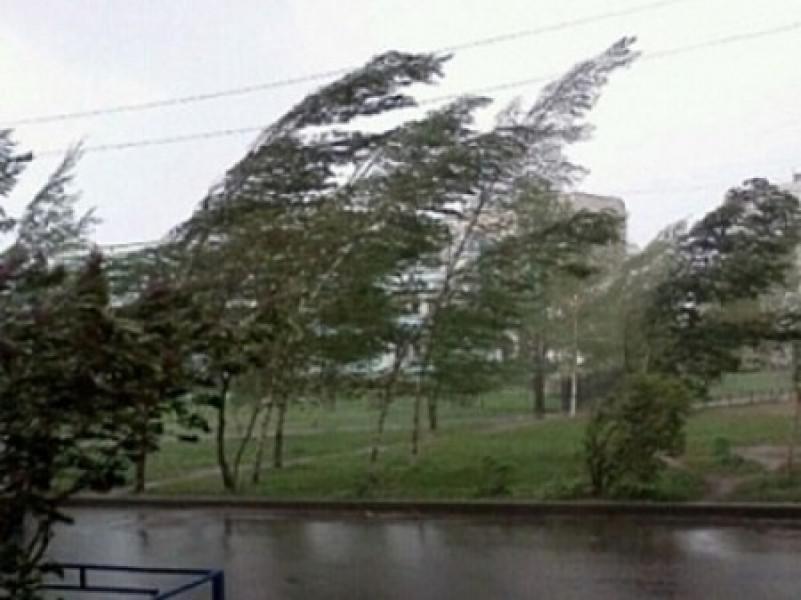Ввыходные синоптики прогнозируют сильный ветер вСвердловской области