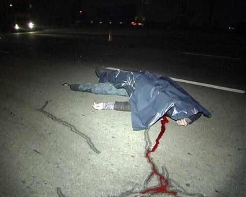 ВПензенской области под колесами иномарки погибла 23-летняя девушка