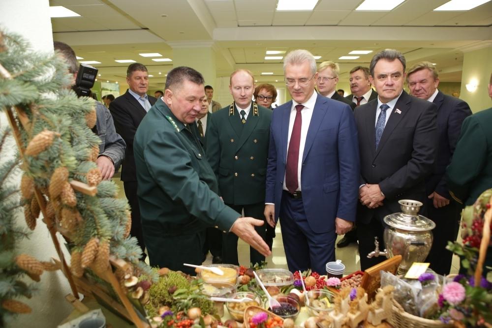 ВСосновоборском районе откроется цех поконсервированию грибов иягод
