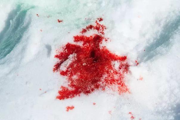 Убийцу ребенка вСурске осудили ипринудили клечению