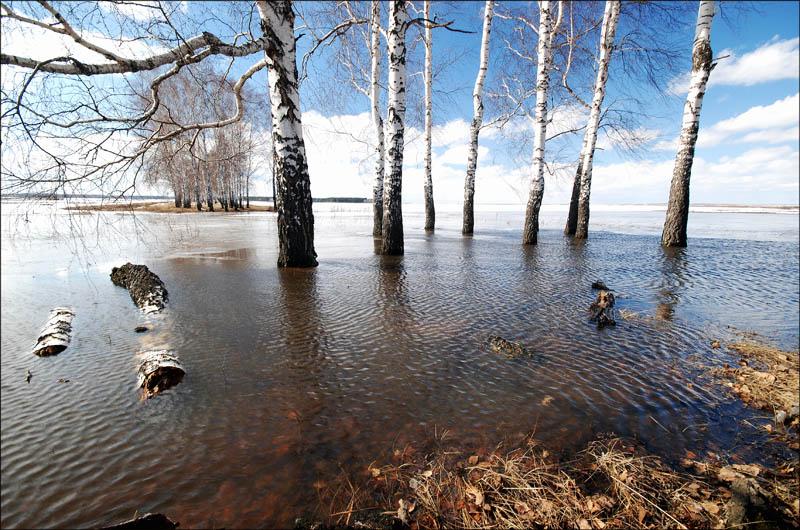 Когда вПензенской области предполагается пик паводка?