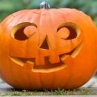 На Хеллоуин пензенцы боятся встретить вампира, оборотня и тещу