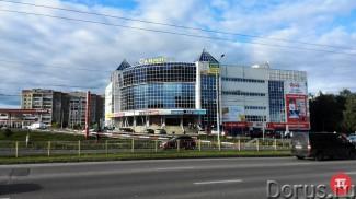 Перезагрузка Колдамасова. В Пензе и Кузнецке продают торговые центры «Олимп»