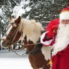 Актеры из Пензенской области стали лучшими Дедами Морозами России