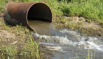 Роспотребнадзор наказал «Ледяной дом» за нарушения санитарных норм