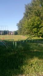 Пензенцы жалуются на фекалии на футбольном поле