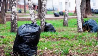 В Пензе воспитанников детсадов будут учить собирать мусор
