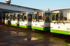 Не исключено, что для пензенских детей-сирот проезд в общественном транспорте станет бесплатным