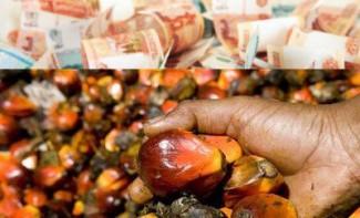 Налог на пальмовое масло: пензенский бюджет в плюсе, а кто в минусе?