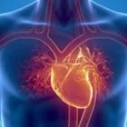 За семь месяцев от сердечно-сосудистых заболеваний в Пензенской области скончались 6266 человек